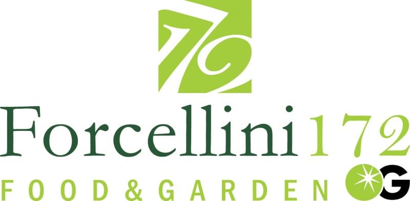 04 forcellini172