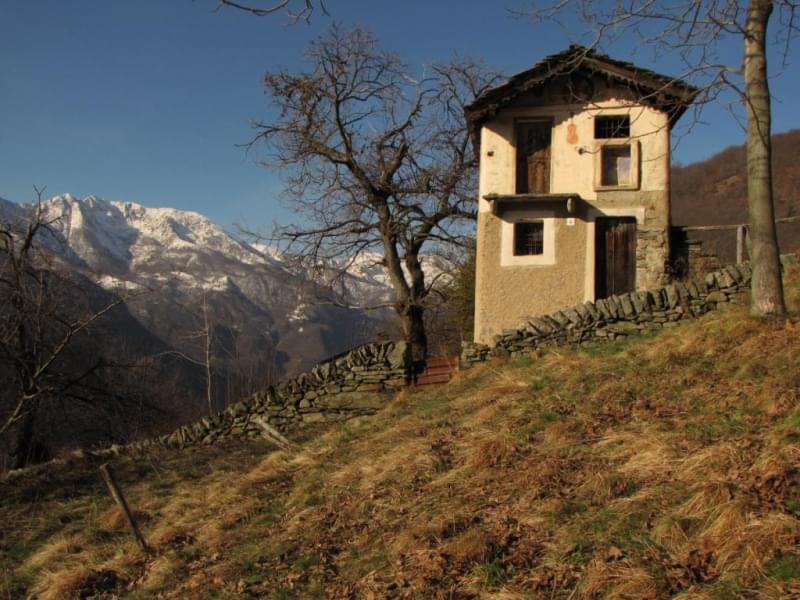Casa del Violino, Scogna Sottana