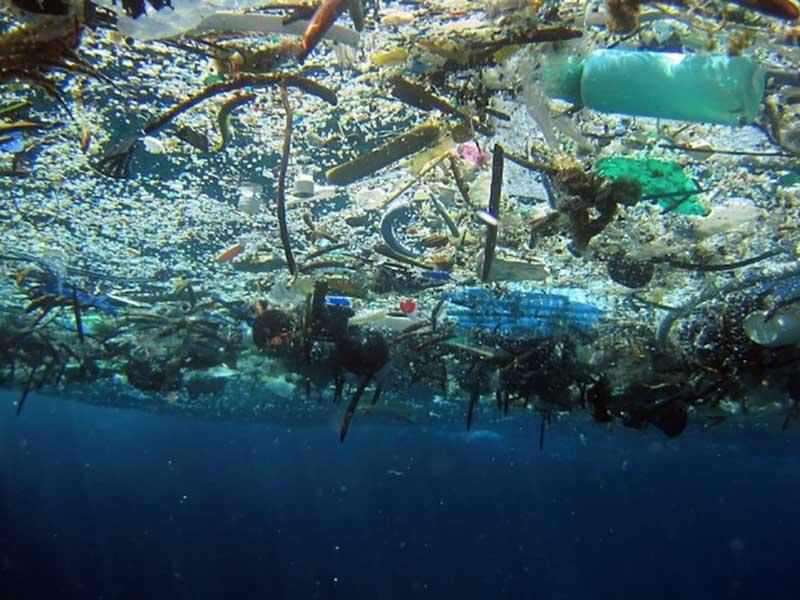 12 north atlantic garbage patch