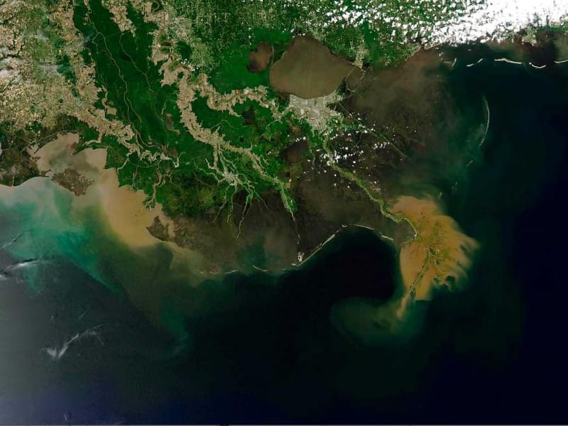 13 zona morta del golfo del messico