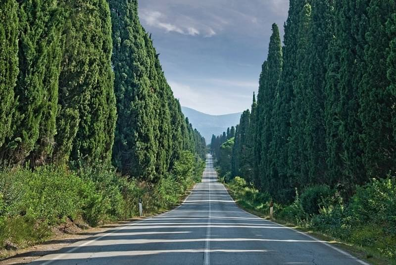 20 viale dei cipressi