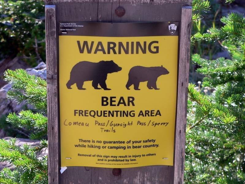 Cartello Pericolo orsi