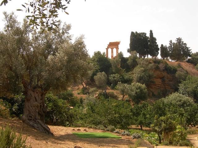 agrigento giardino della kolymbetra