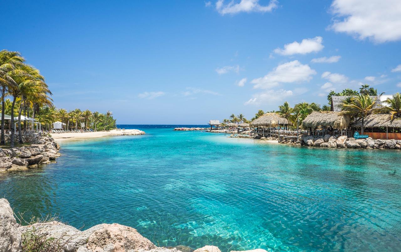 aruba spiaggia e palme