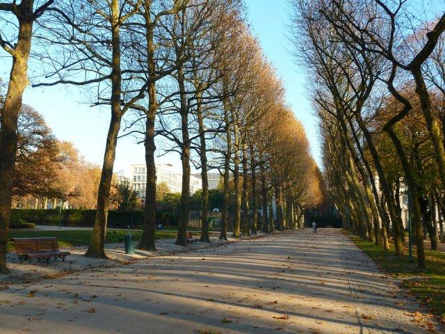 autunno a bruxelles