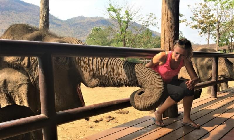 bagno con elefanti thailandia