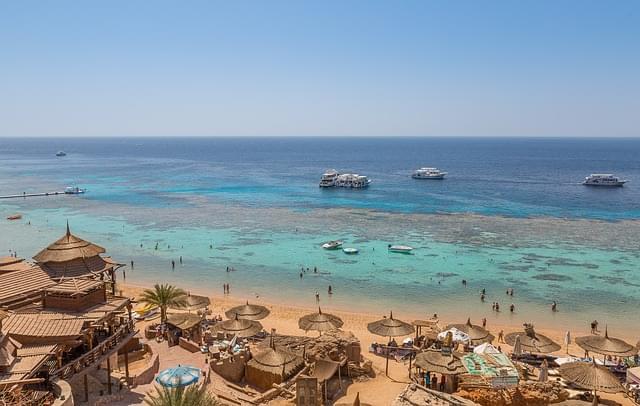 barriera corallina a sharm el sheikh