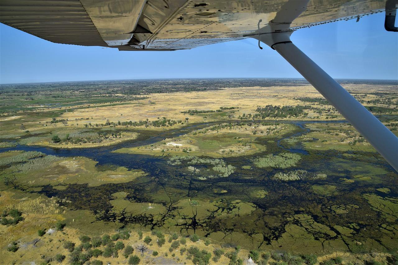11 okavango delta