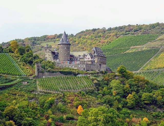 castello di Melnik con vigneti vicino praga