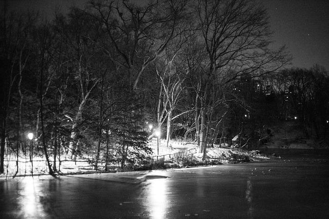 central park notte ombra