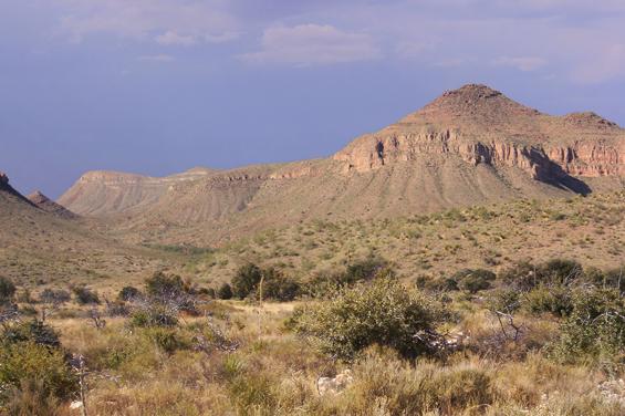 11 - Deserto di Chihuahua: 360.000 km²