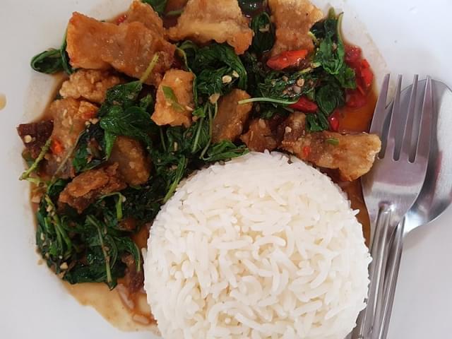 crispy pork with rice chiang mai