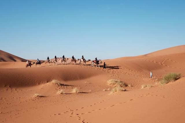 deserto cammelli douz sabbia