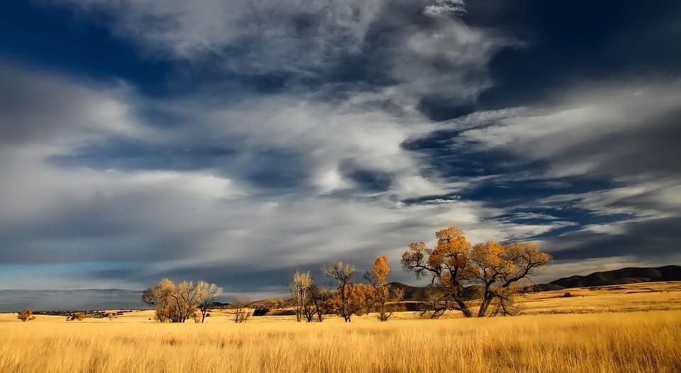 Deserto patagonico