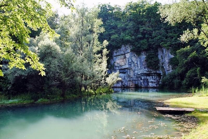 Diletta: 50 sfumature di verde in Bela Krajina