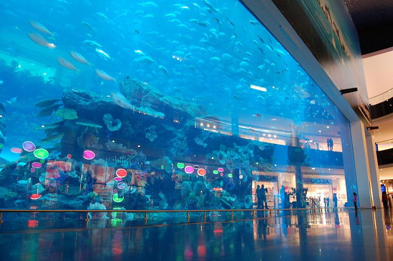 05 dubai aquarium
