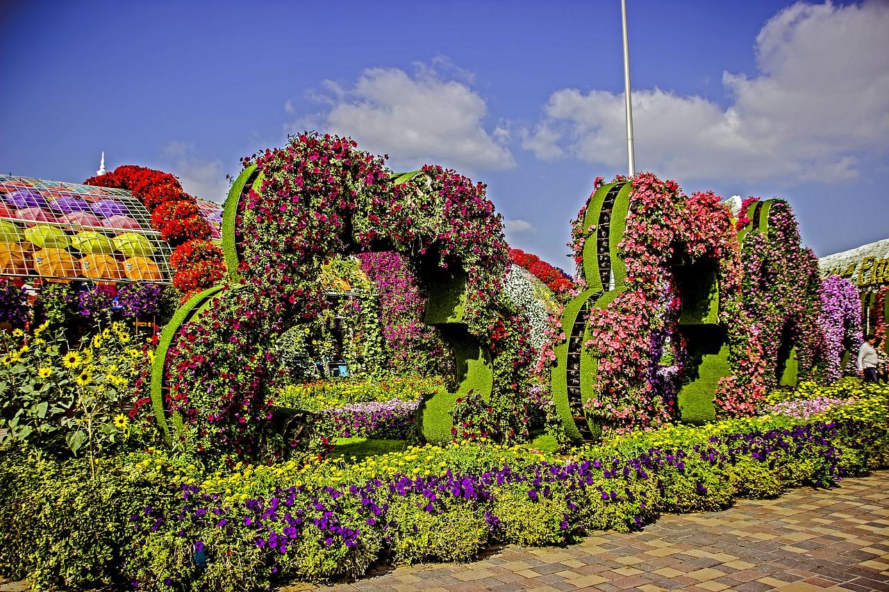 07 dubai miracle garden