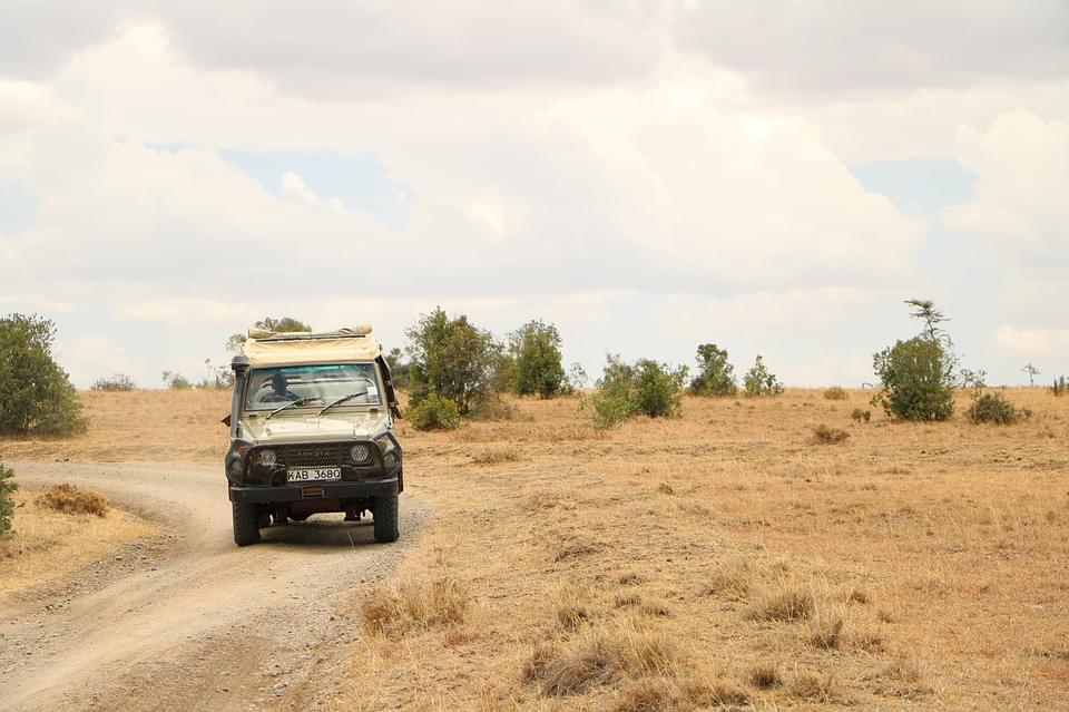 game drive safari in kenya