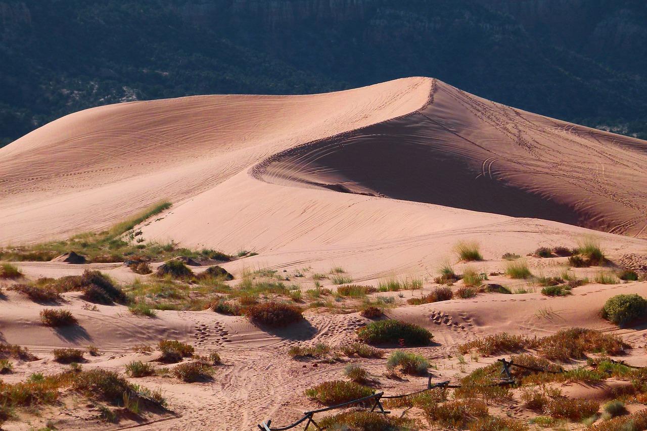 9 - Gran Deserto Sabbioso: 360.000 km²