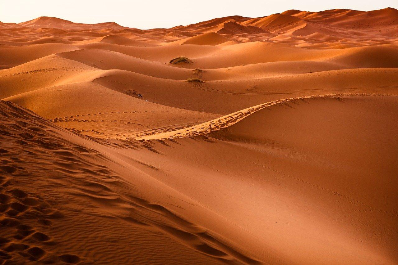 10 - Gran Deserto Victoria: 424.400 km²
