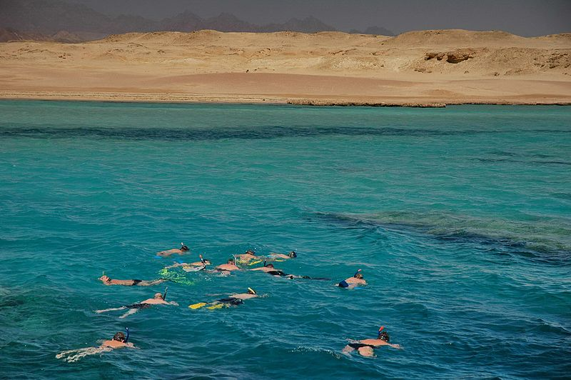 02 parco nazionale ras muhammad sharm el sheikh