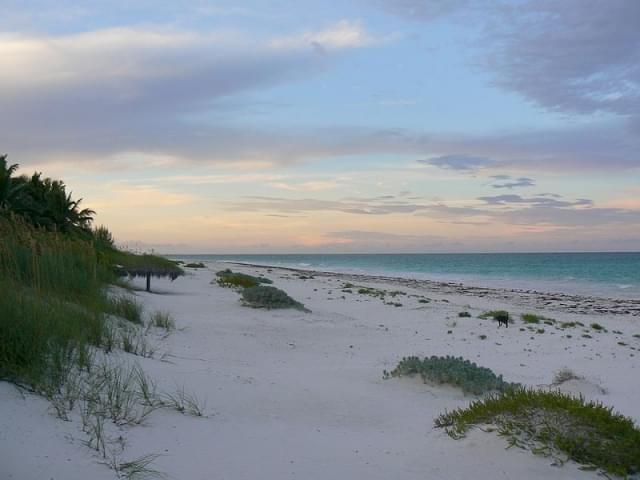 harbou island spiaggia