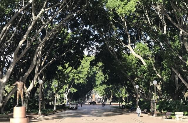 hyde park sydney 1