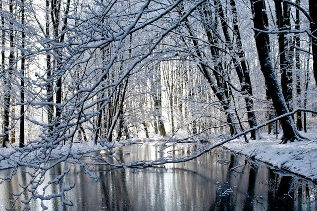 inverno ad amsterdam