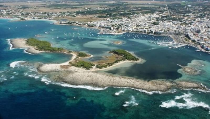isola grande porto cesareo