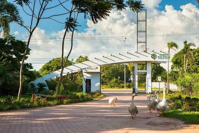 jardin botanico municipal