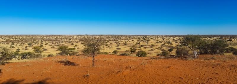 8 - Kalahari: 520.000 km²