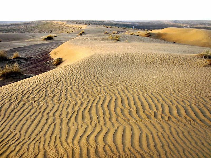 13 - Deserto del Karakum: 350.000 km²