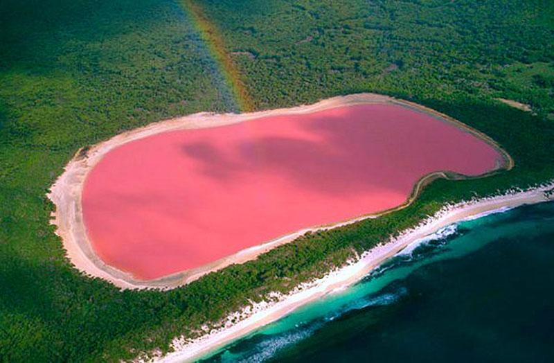 perché Lake Hillier è rosa?