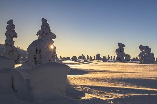 lapponia inverno neve paesaggio
