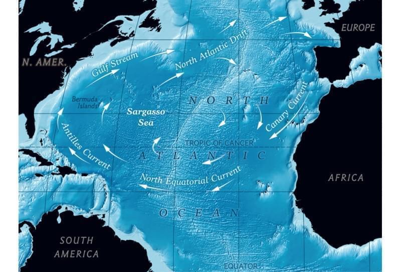 Mappa del Mar dei Sargassi