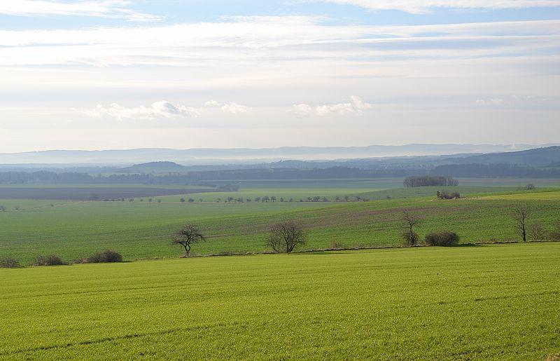 7 green fields of moravia