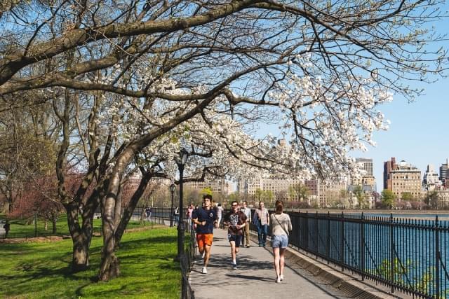 new york city central park primavera