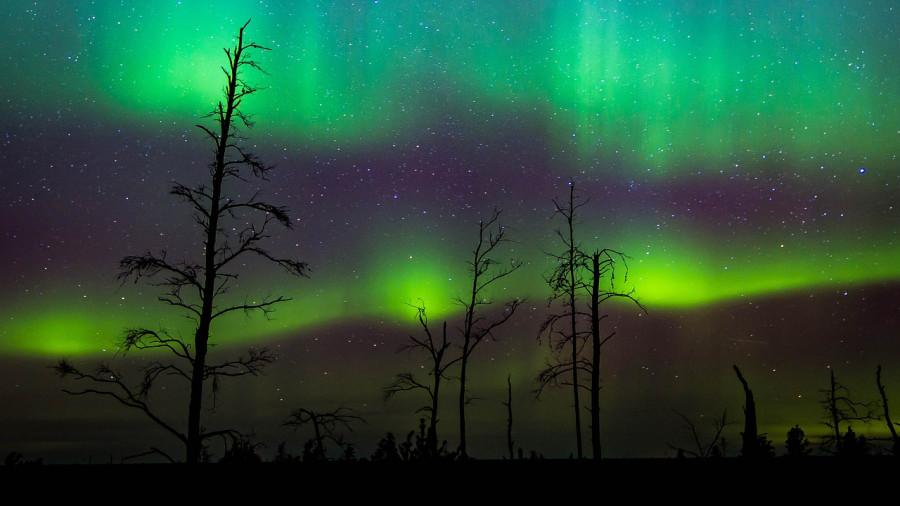Aurora dalle Isole Svalbard