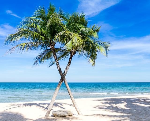 panorama sulla spiaggia dei caraibi