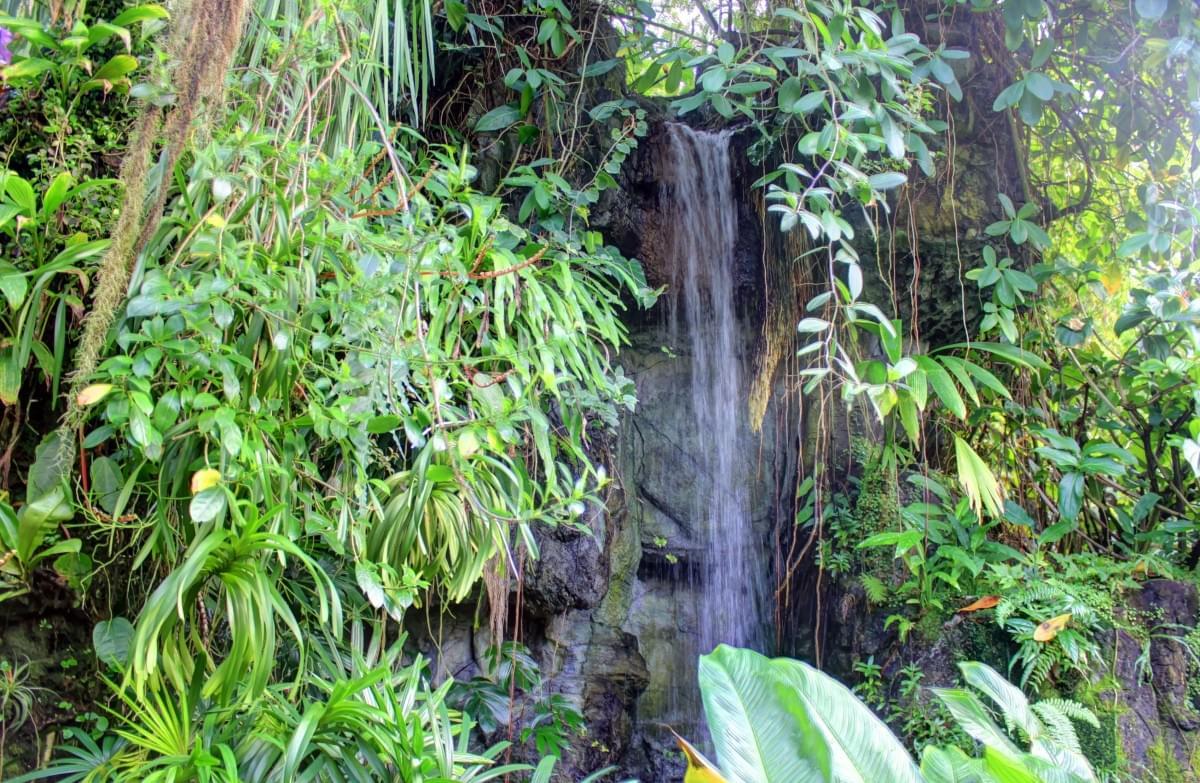 parco archeologico botanico del paradiso
