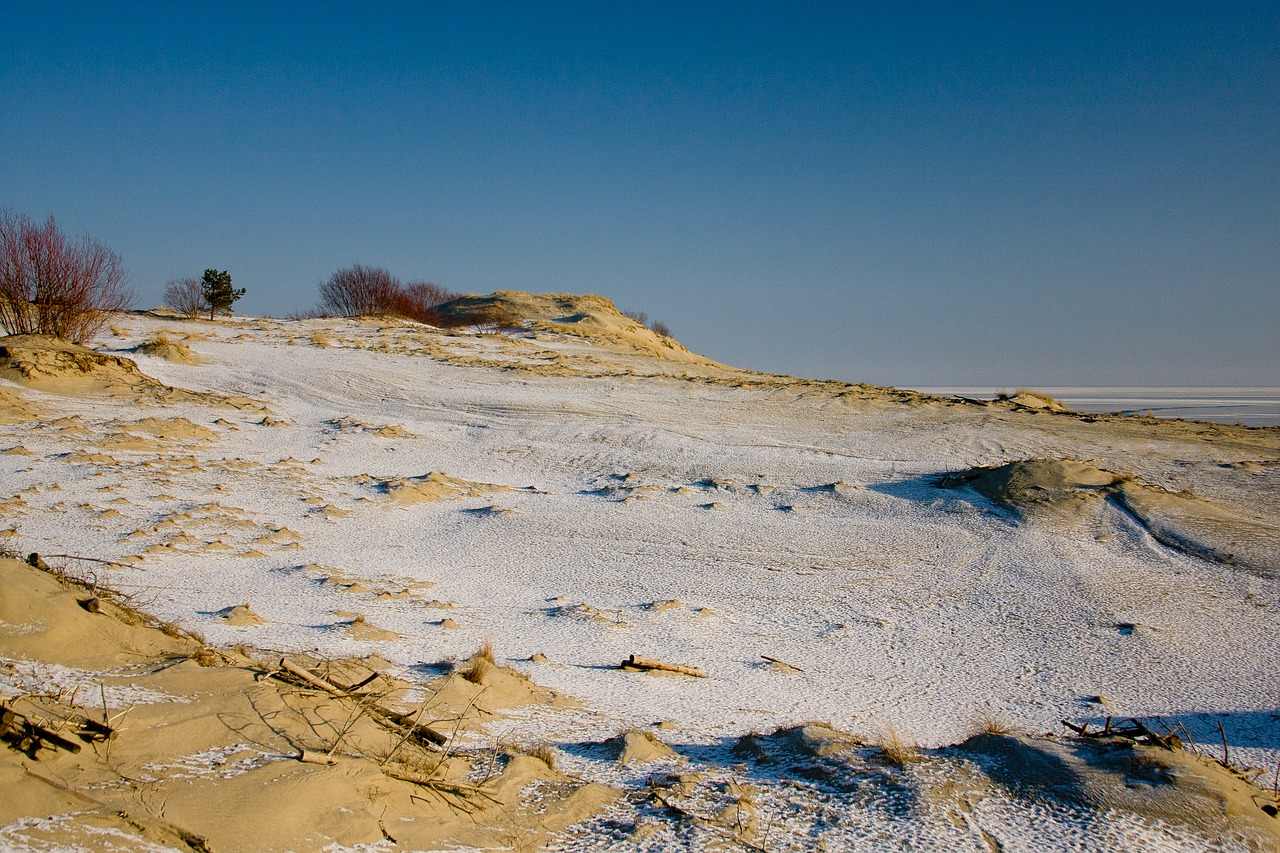 8 panorama neringa lituania(1)