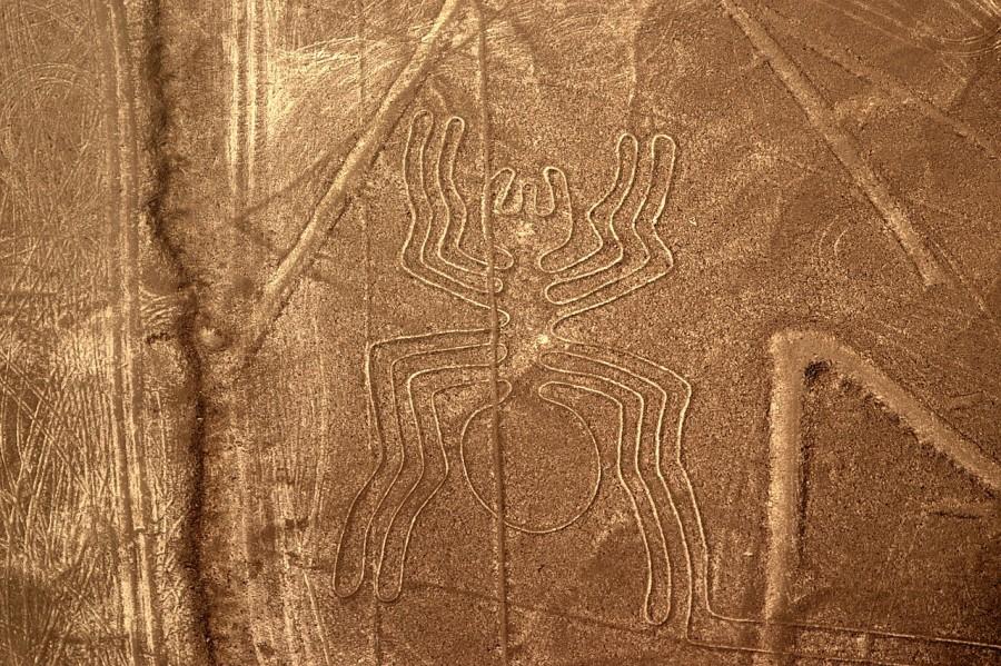 04 linee di nazca peru