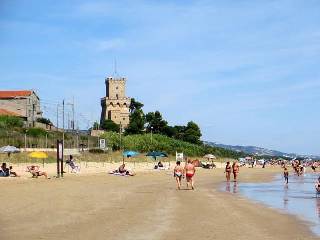 pineto spiaggia con torre di cerrano