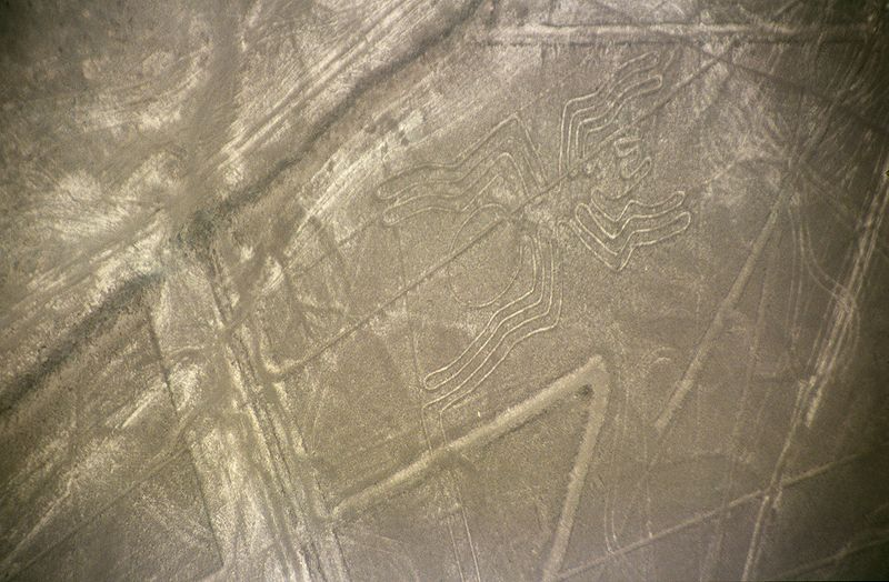 Mistero linee di Nazca Perù