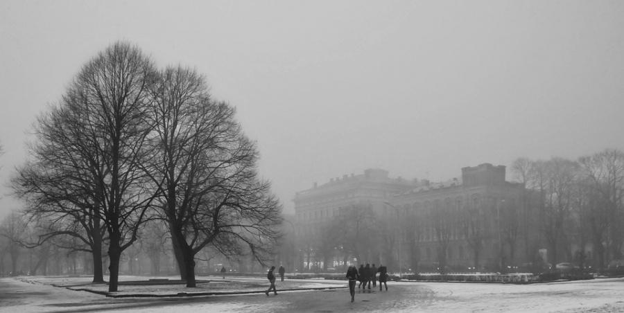 5 riga inverno