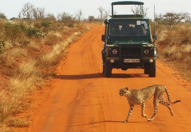 safari tsavo 4x4