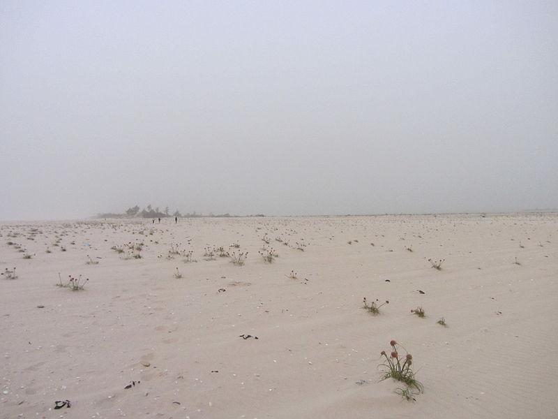langue de barbarie Saint Louis Senegal