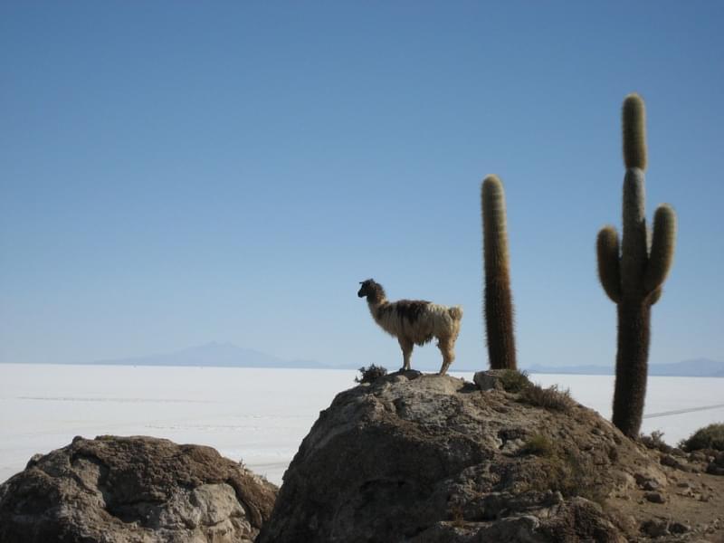 20 - Salar de Uyuni - 10.582 km²