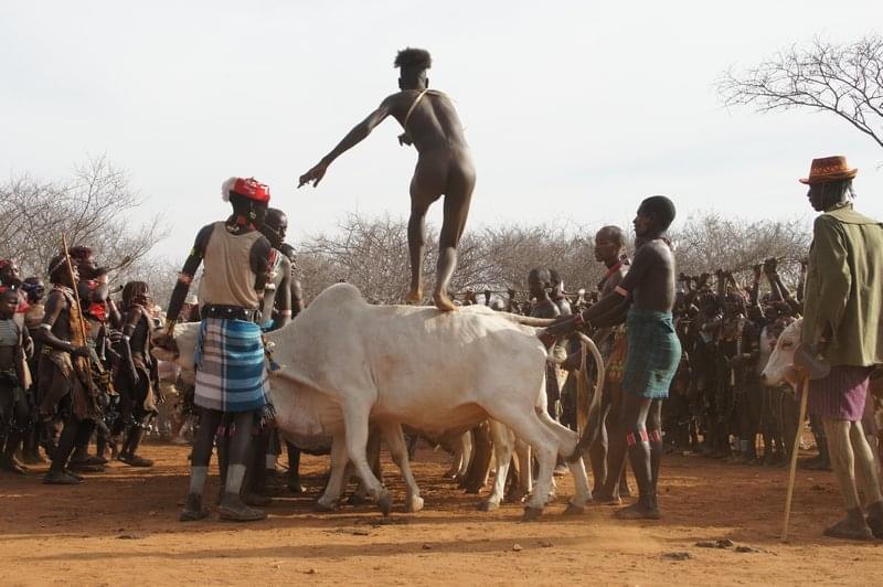 salto dei tori