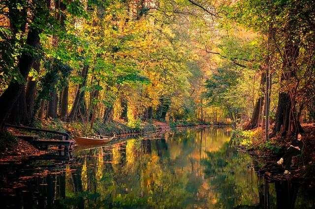 spreewald acqua canale paesaggio 1
